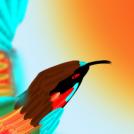 erlatxori alegiazkoak  imaginary  bee-eaters