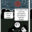 Crick-nic Under The Stars