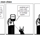 Le sondage expliqu  mon chien