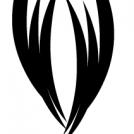 Sphinx - Sketch