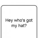 Hey Who's Got My Hat?