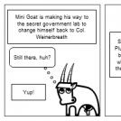 The Weird World of Flan!