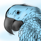Blue Sad Bird!