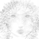 Zek portrait