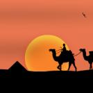 egypt nights