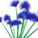 Blue Zealous