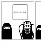 ninja vs wrestler