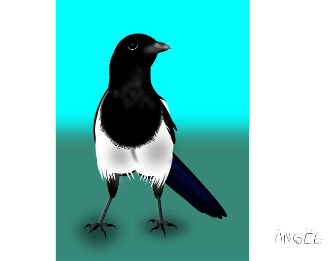 Mika - Magpie 2