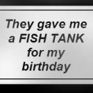 "Strip #11 (""The Fish Tank"")"