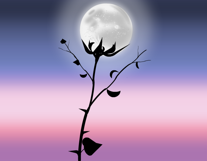 The Moon Rose that Night