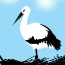 Zikoinak 2 --- Storks 2