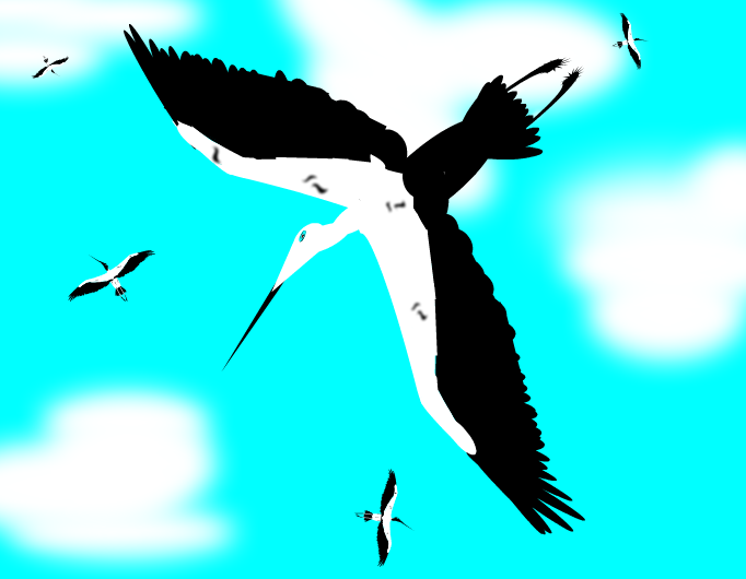 Zikoinak - Storks