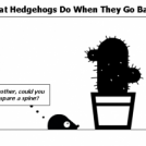 What Hedgehogs Do When They Go Bald