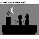 Cat and tom-cat on roof