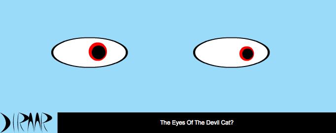DLRAAR: The Eyes of the Devil Cat?