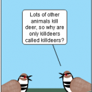 Killdeer The Bit