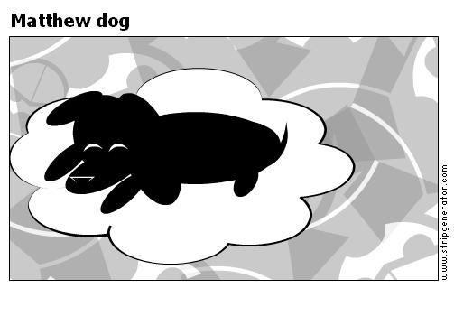 Matthew dog