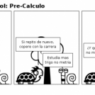 """Tortuga """"I"""" Caracol: Pre-Calculo"""