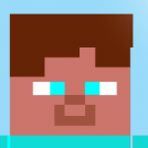 Steve the Minecraftian