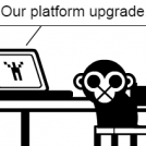 If platform upgrade emails were truthful