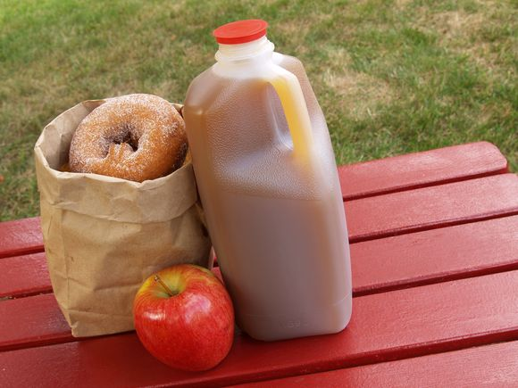 apple cider donuts free recipe