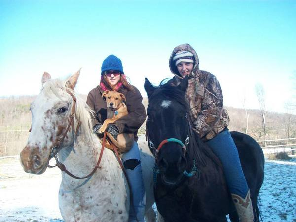 local horseback riding