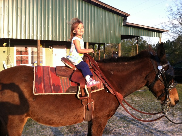 girl horseback riding