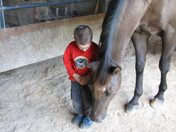 kid and horse