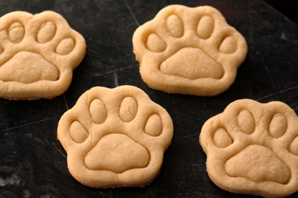 A Sweet Treat For Your Pup: Homemade Peanut Butter Dog Treats