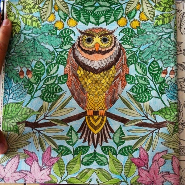 Coloring Books! For Adults! This Is Too Amazing!
