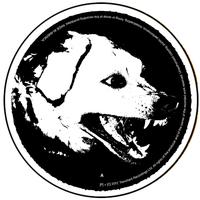 Tdubs logo