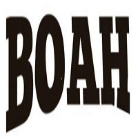 Boah logo %282%29