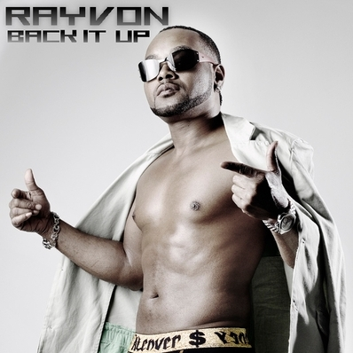 Rayvon back it up cover