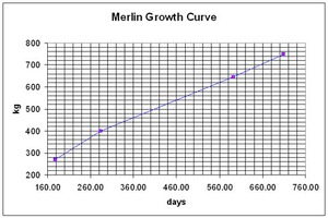 Merlin growth chart