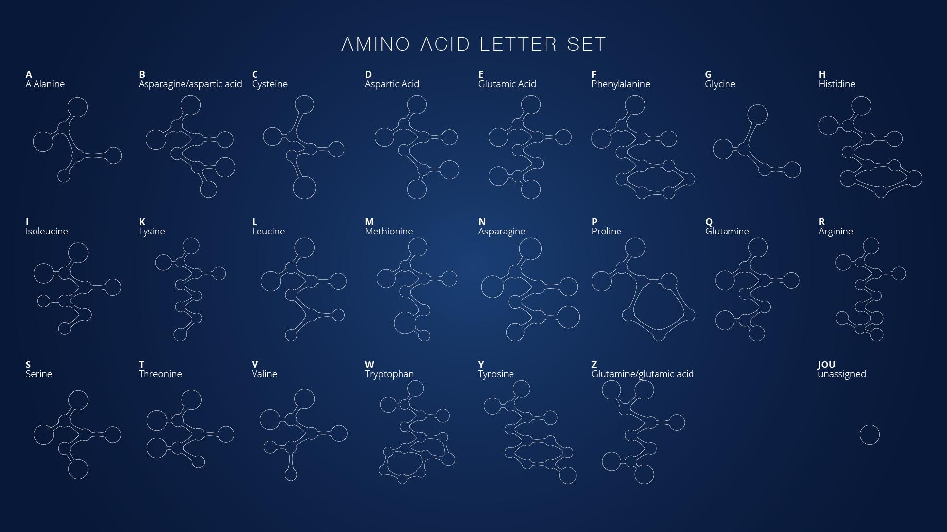 Sunrise: Amino Acid Letters