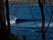 Eaglehawk_neck_bowl-_nicholas_green_photo-2
