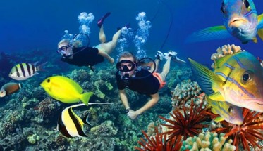 win-a-zip-line-and-snorkeling-trip-to-maui-570x300