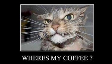 free-coffee-1