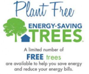 plant free