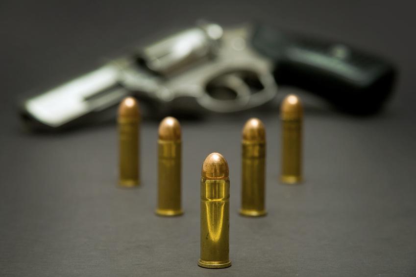 pro gun control arguments essay