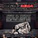 PXC Laban MMA