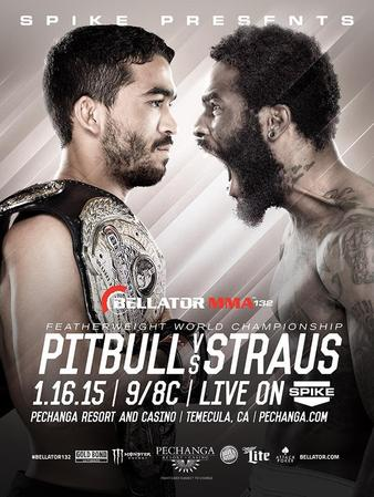 Bellator 132 Quick Results