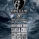 Gallus FC 5
