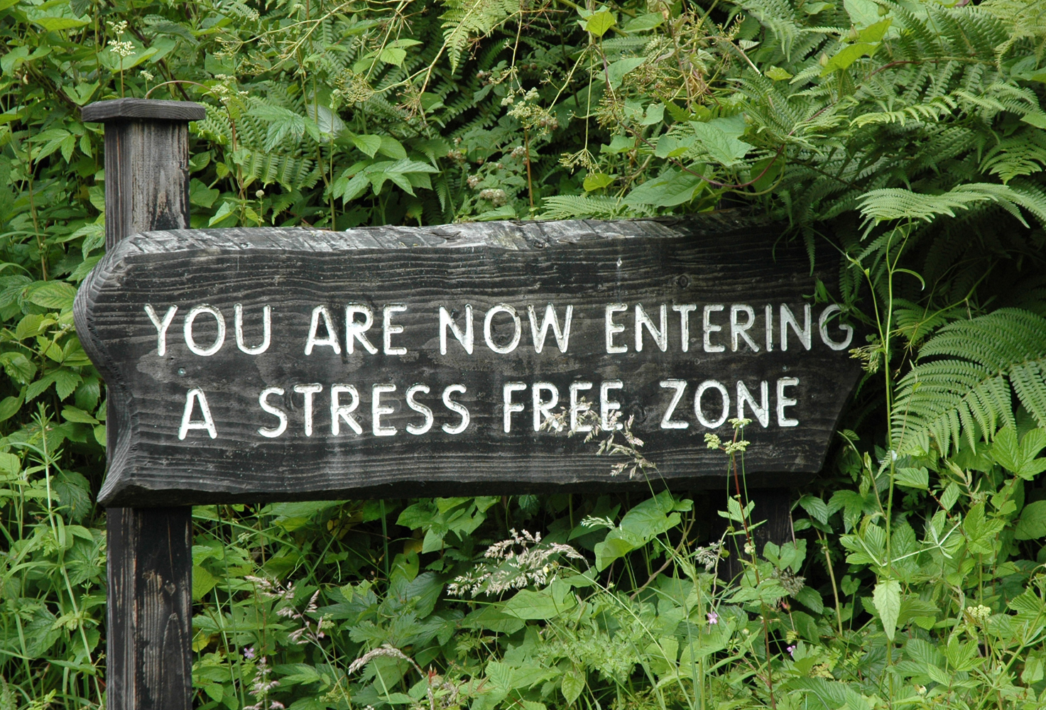 Putting Stress in its Place in Your Life