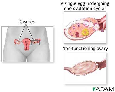 http://drjanet.tv/health-a-z/struggling-with-infertility-it-may-be-premature-ovarian-aging/
