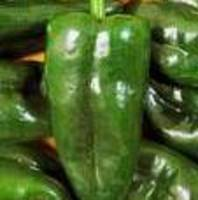 """Chiles Rellenos"" Casserole #1 Recipe"