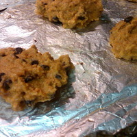 A REAL Low-Calorie Cookie (with variations) Recipe