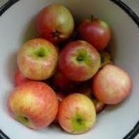 Crockpot Apple Pie Recipe