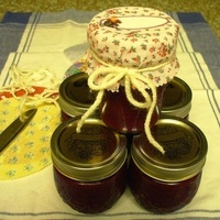 Phoebe's Plum Sauce Recipe