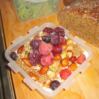 Quinoa Porridge, Activated Nuts and Seeds and Summer Berries Recipe
